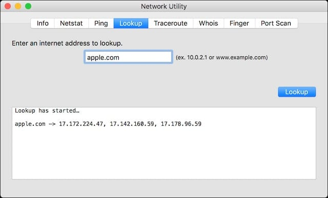 Network Utility - Lookup
