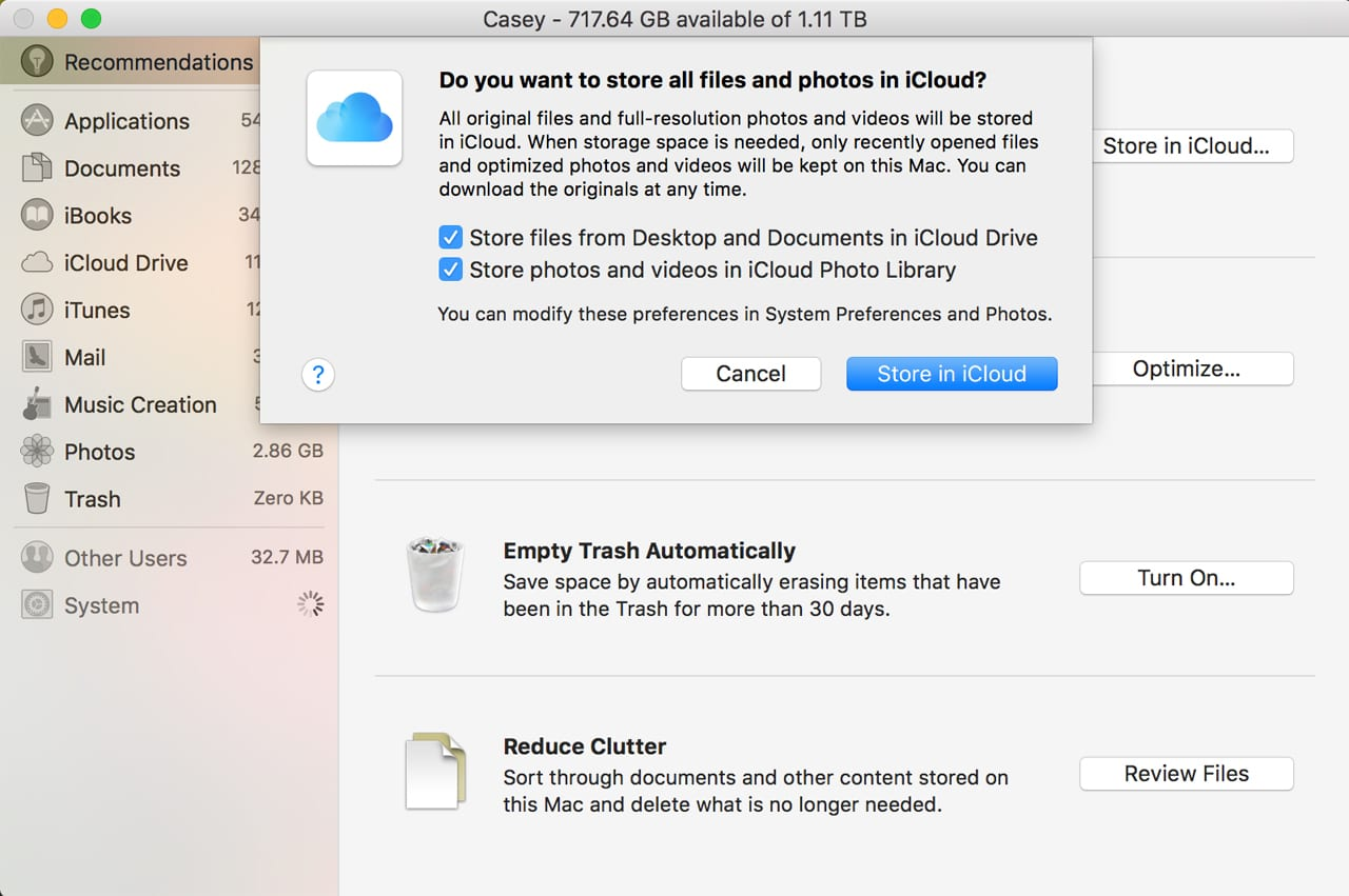 (Store in iCloud gives you the option of moving Desktop files, items from your Documents folder, and photos to iCloud. Once copied to iCloud, they're marked as purgeable.)