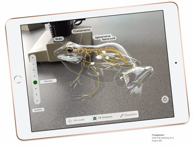 The new iPad with an ARKit app (Froggipedia) used for virtual dissections