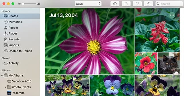 The new Photos tab in the Photos app.