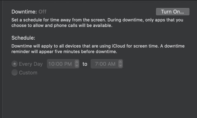 Screen Time Downtime settings