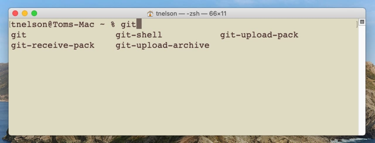 Zsh within Terminal showing auto-complete function.