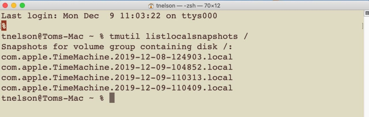 Terminal command to list all local snapshots.