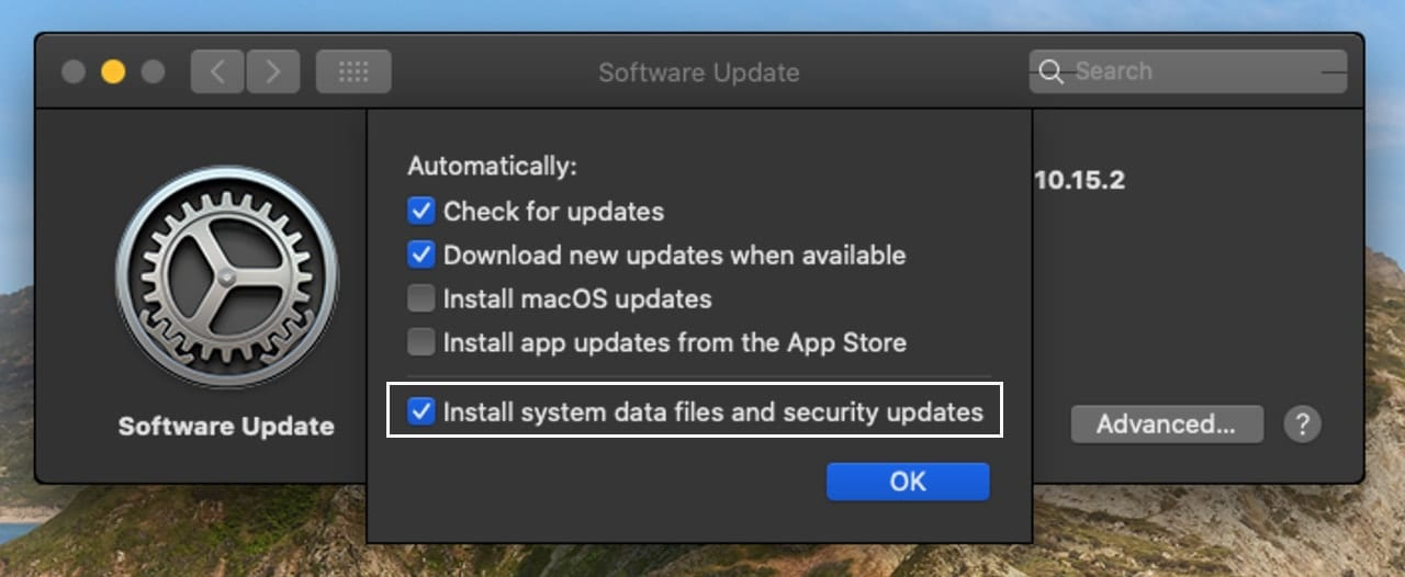 Option for installing system data files and security updates in macOS Catalina.