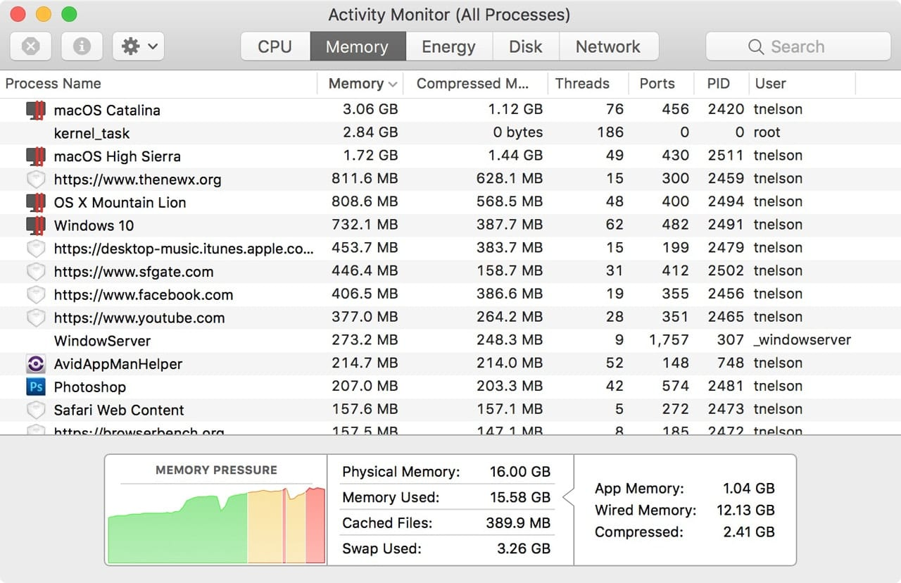 Activity Monitor's Memory tab showing memory pressure and how processes are using RAM.