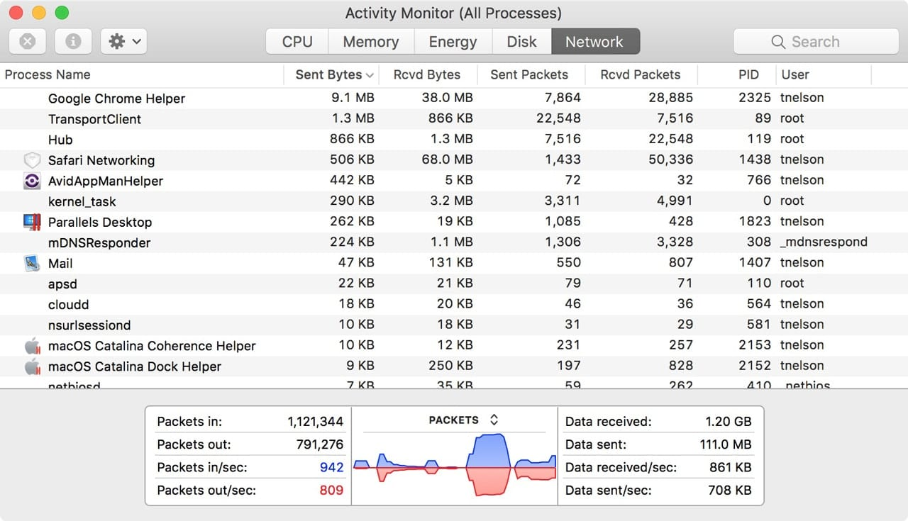 Network tab in Activity Monitor.