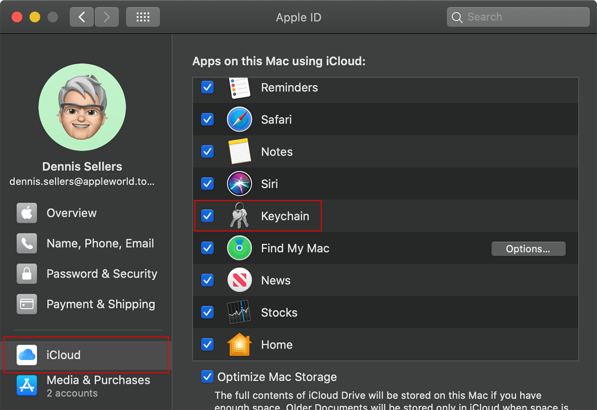Screen shot of iCloud preferences on a mac with icloud and kechain highlighed with a red box