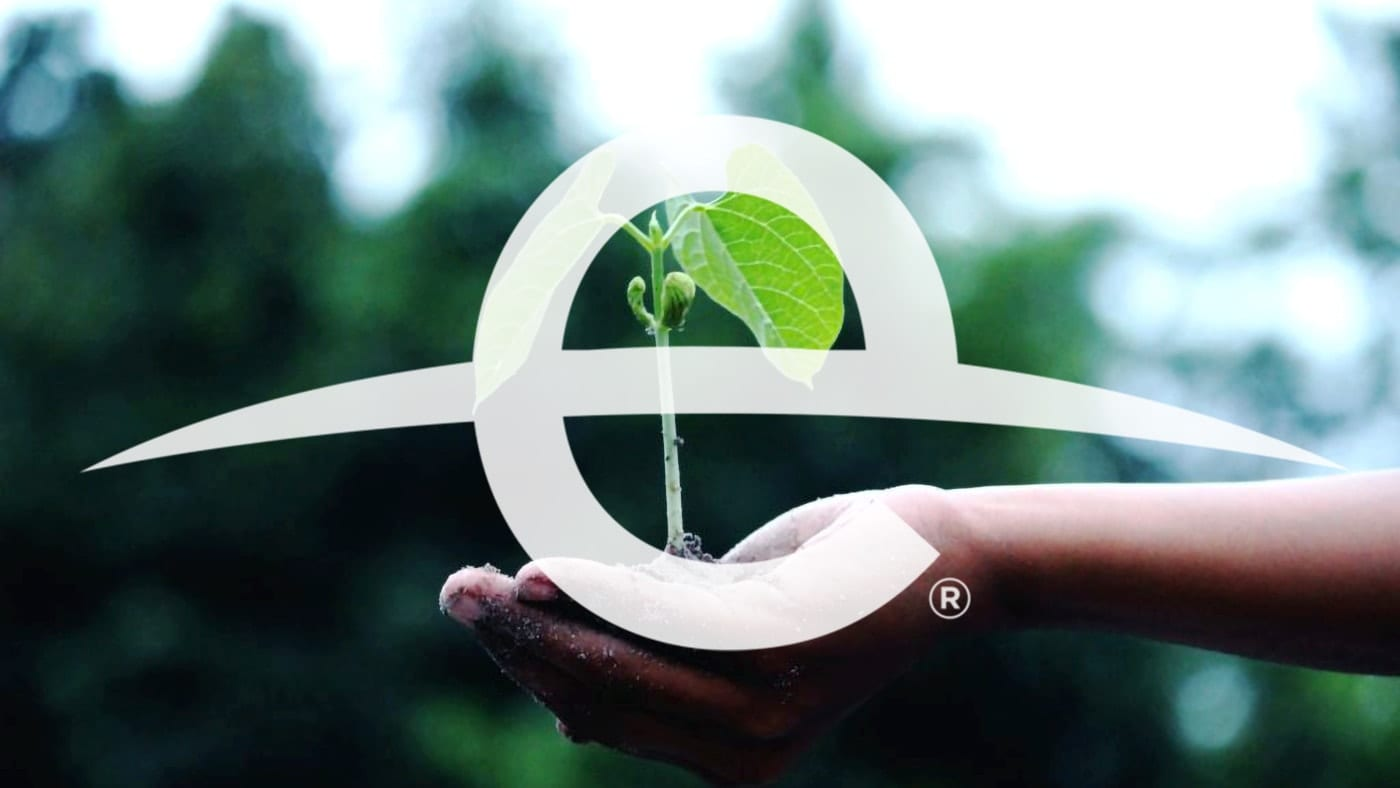 Earth Day logo with a hand holding a green sprouting plant
